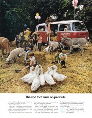 vw-us-zoo-that-runs-on-peanuts-1971.jpg
